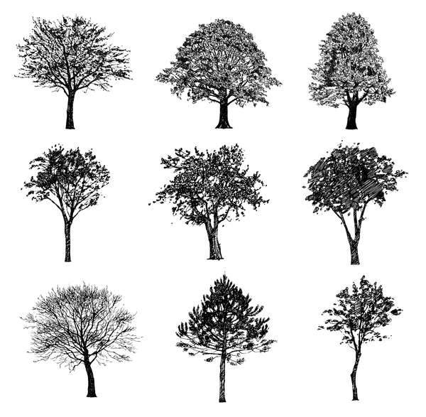 Various tree silhouette vectors set 01