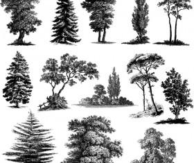 Various tree silhouette vectors set 02