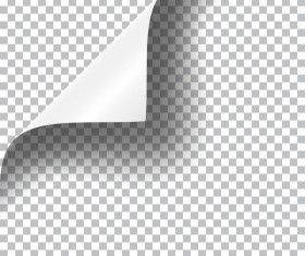 White paper curled corners vector illustration 03