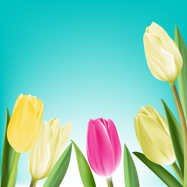 Yellow with pink tulips realistic vector 01