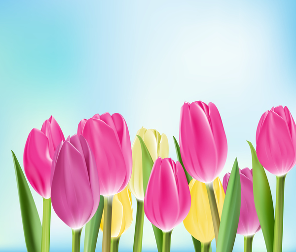 Yellow with pink tulips realistic vector 02