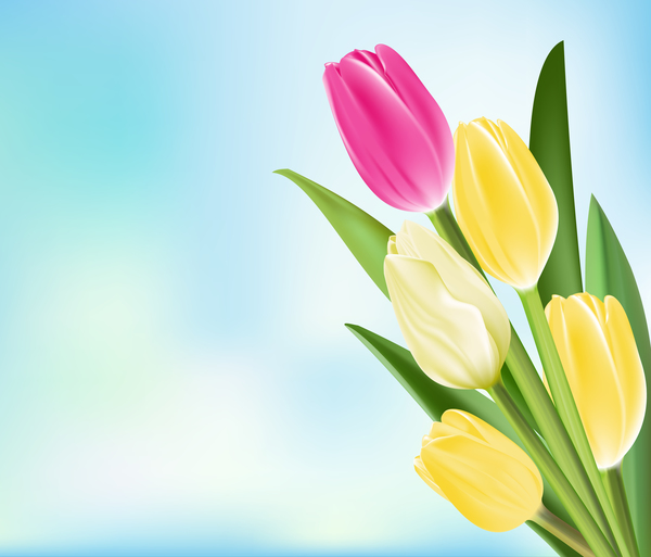 Yellow with pink tulips realistic vector 03