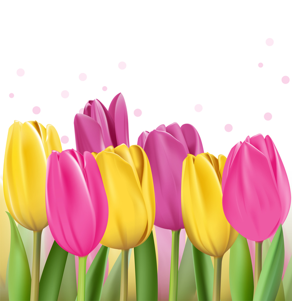 Yellow with pink tulips realistic vector 04