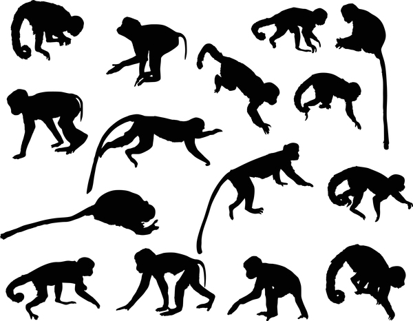animal monkey silhouette vector 01