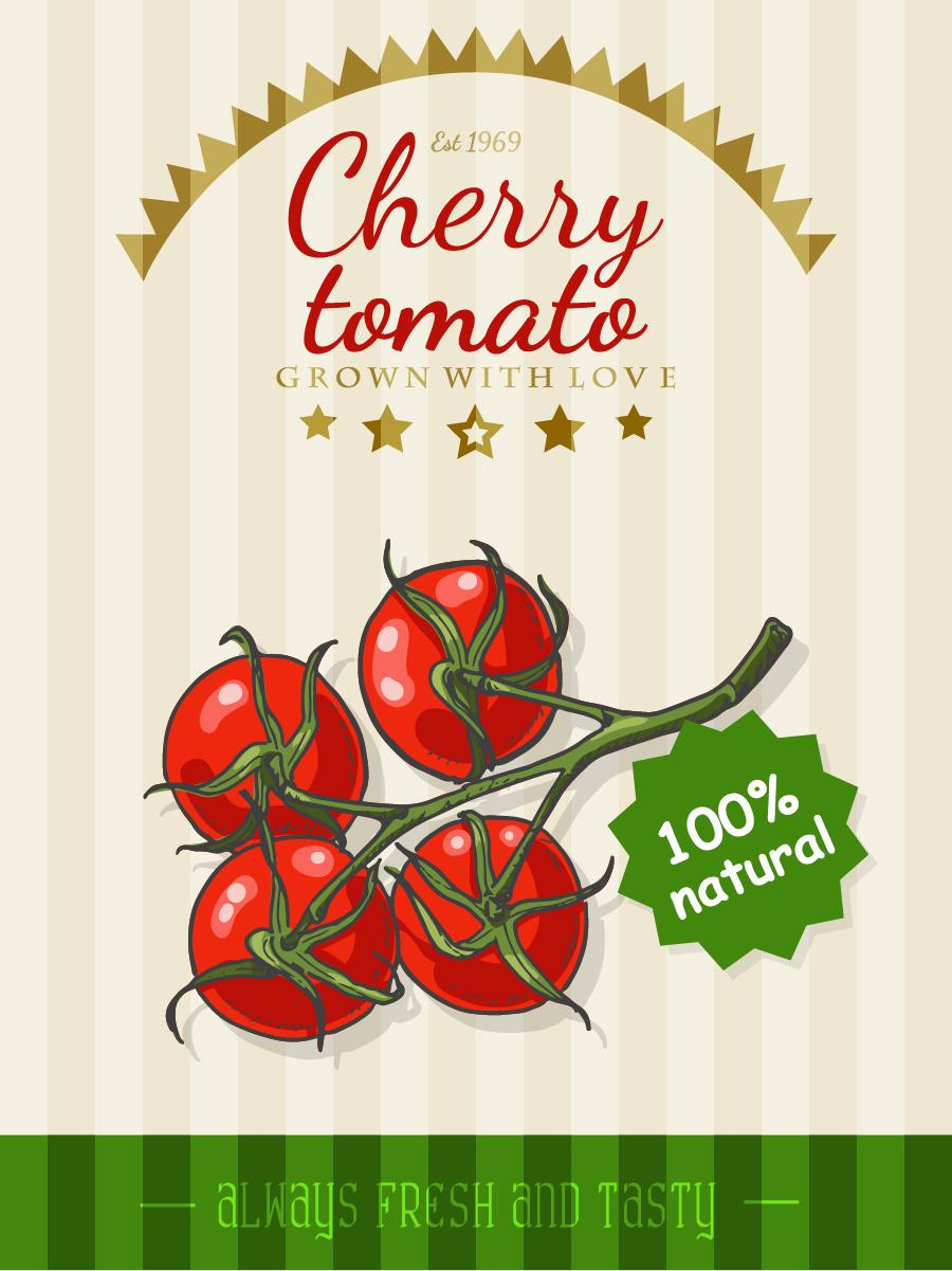cherry tomato poster template retro vector