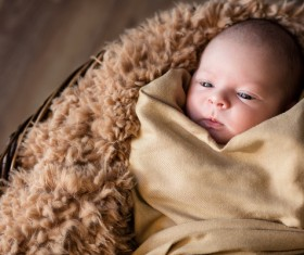 cute baby HD picture