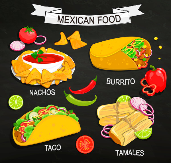 mexican food illustration vector