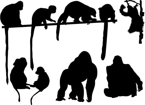 monkey lemur silhouette vector