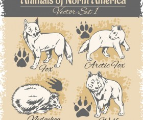 north america animal with footprints vector 01