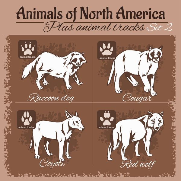 north america animal with footprints vector 02