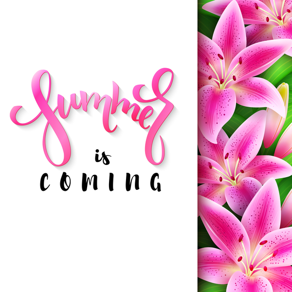 tropical pink flower with summer background vector 01