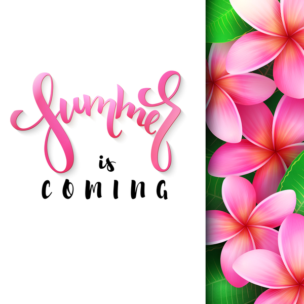 tropical pink flower with summer background vector 02