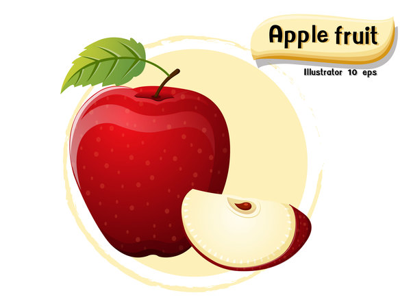Apple fruit illustration vector