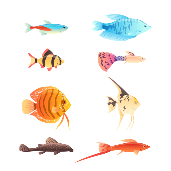 Beautiful tropical fish vector set 03