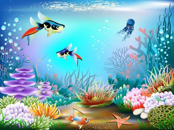 Beautiful underwater world vector material 02