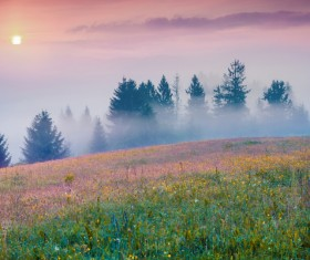 Filled with foggy fields HD picture 01