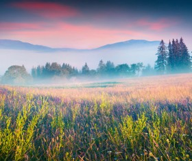 Filled with foggy fields HD picture 02