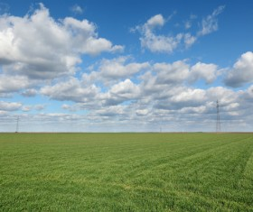 Green farmland Stock Photo
