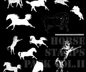 Horse Stamps Photoshop Brushes