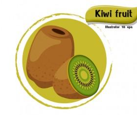 Kiwi fruit illustration vector