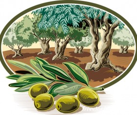 Olive treeIn oval frame vector 02