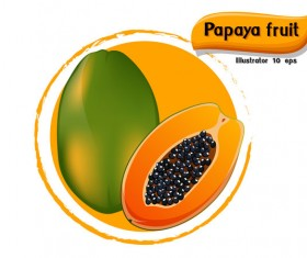 Papaya fruit illustration vector
