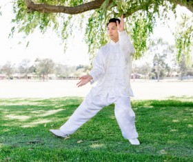 People practicing tai chi in park HD picture 05