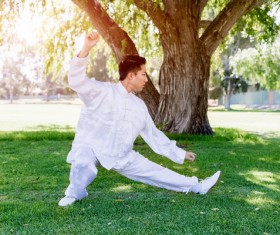 People practicing tai chi in park HD picture 06
