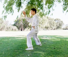 People practicing tai chi in park HD picture 08