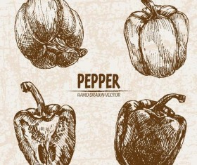 Pepper hand drawing retor vector 01