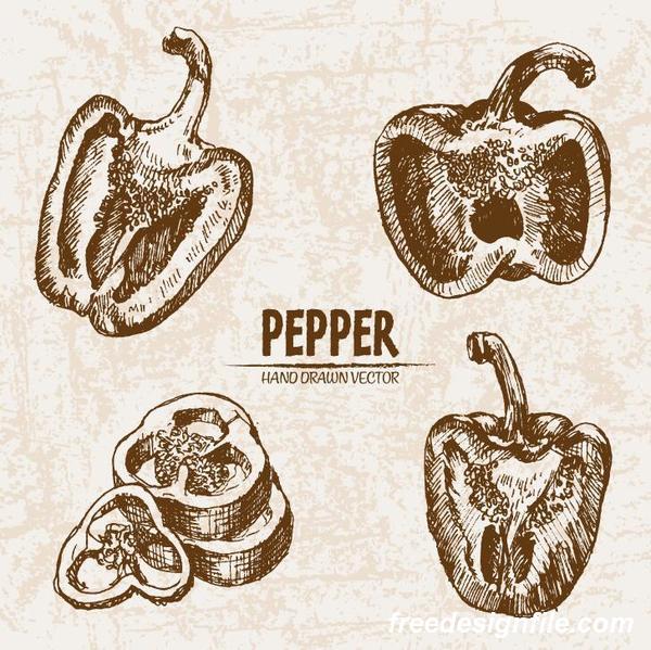 Pepper hand drawing retor vector 02