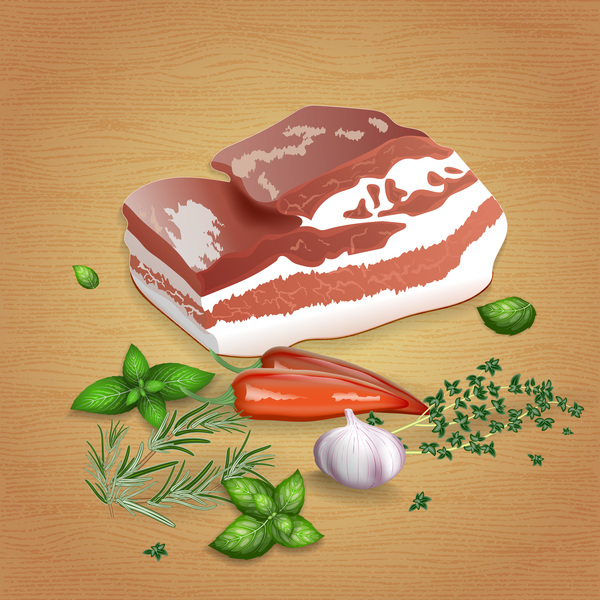 Pork with sauces and spices vector 04