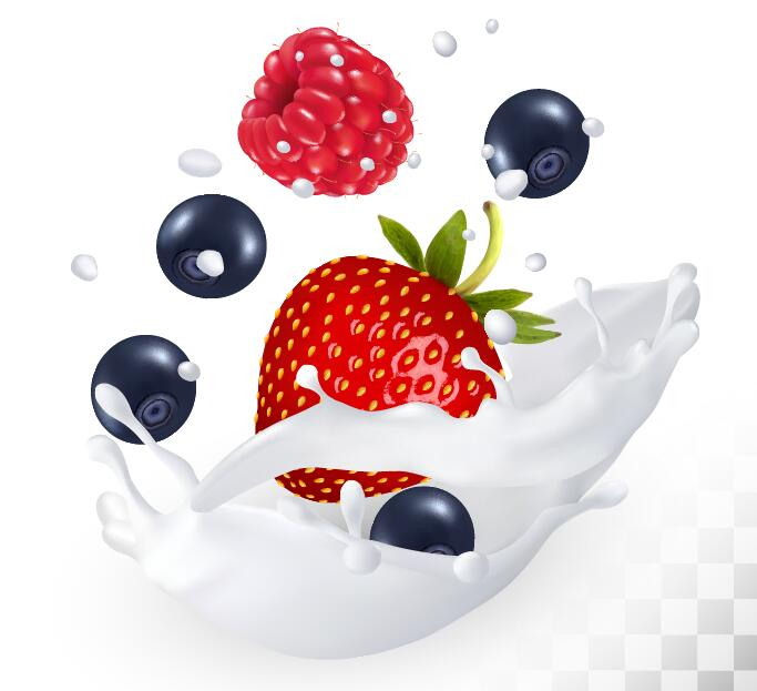 Raspberry bluberry strawberry with splash milk vector