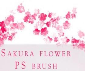 Sakura Flower Photoshop Brushes