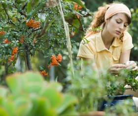 Take care of potted woman Stock Photo