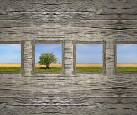 Wood shavings frame Stock Photo