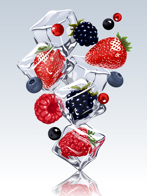 berries with ice cubes design vector
