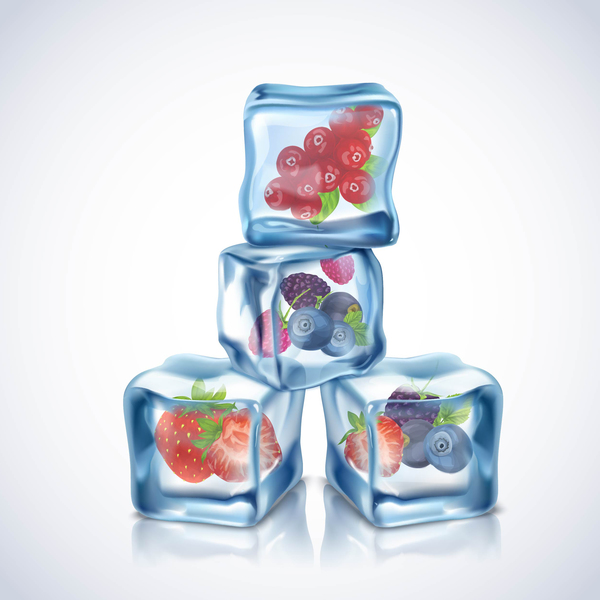 berry with ice cubes illustration vector 02