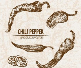 chili pepper hand drawing retor vector 01