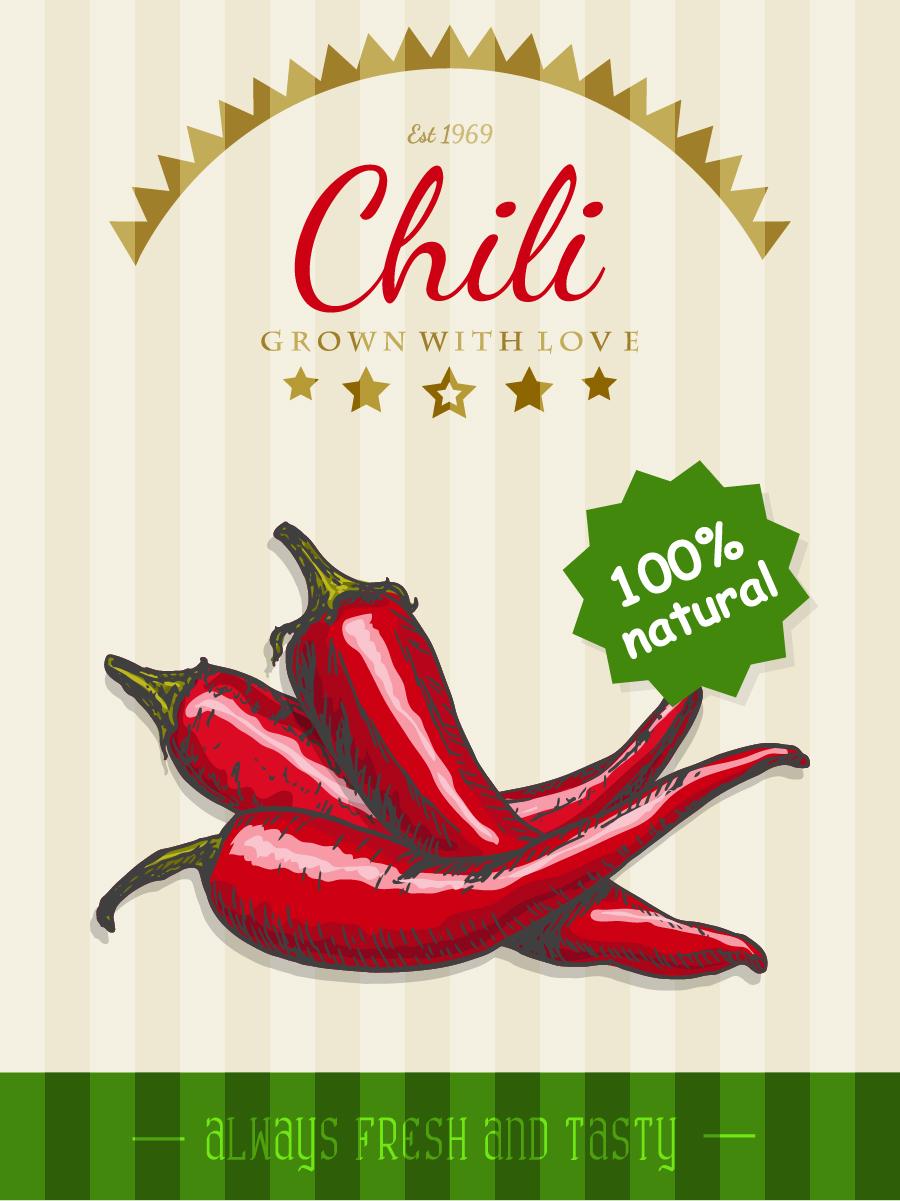 chili poster template retro vector