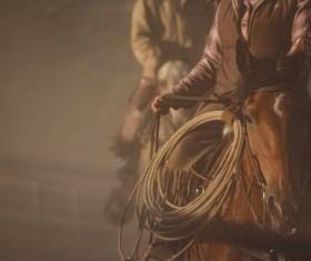 cowboy Stock Photo 05