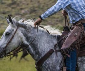 cowboy Stock Photo 06