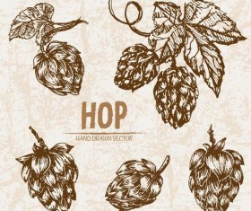 hop hand drawing retor vector
