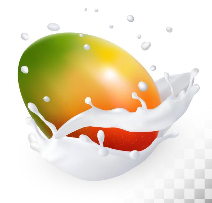 mango with splash milk vector