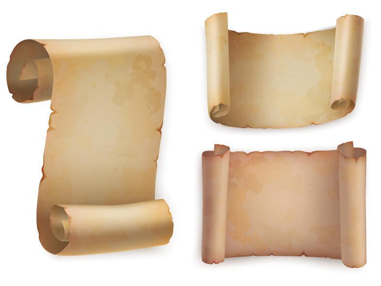 parchment scrolls illustration vector