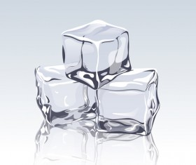 transparent ice cubes design vector
