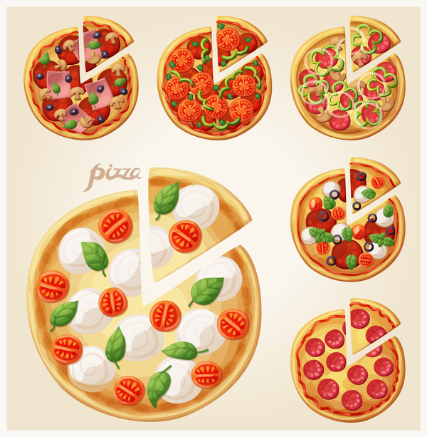 6 Kind pizza vector material