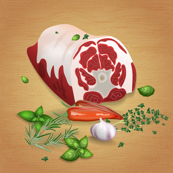 Beef with sauces and spices vector 05
