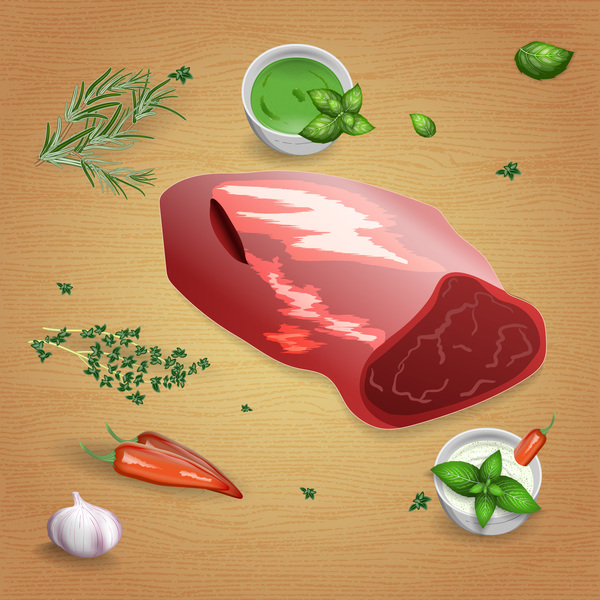 Beef with sauces and spices vector 06