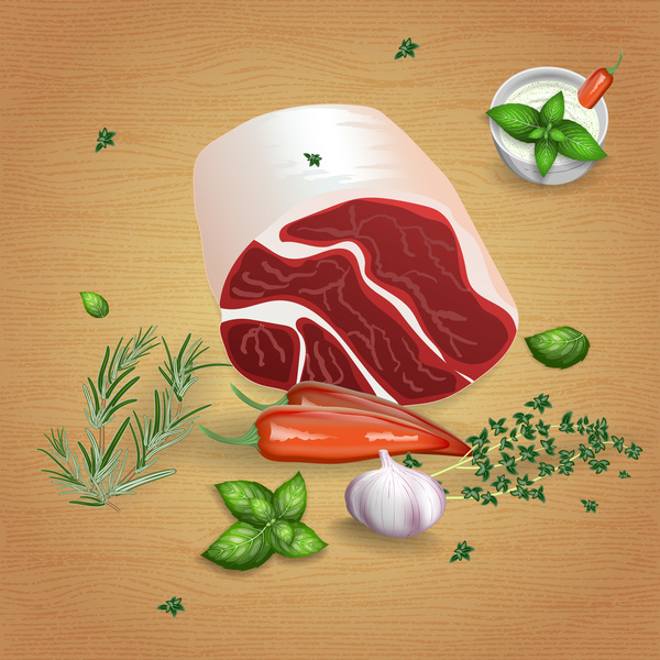 Beef with sauces and spices vector 07